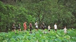 Le lotus, un marché prisé de l'écotourisme