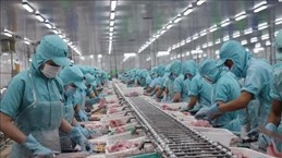 Soc Trang : la production industrielle et les exportations en forte hausse