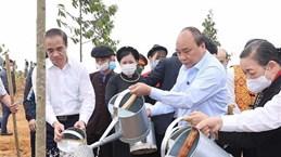 Le PM lance le programme de plantation d'un milliard d'arbres à Tuyen Quang