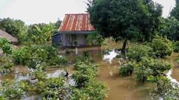 Recherche des solutions pour l'adaptation au changement climatique dans le delta du Mékong