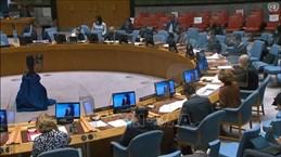 Conseil de sécurité de l'ONU: Impacts de la pandémie sur les efforts de lutte contre le terrorisme