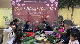 Le Tet vietnamien fêté en Égypte et en Algérie