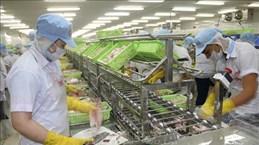 Les exportations de Tien Giang ont augmenté de 19,8% en sept mois