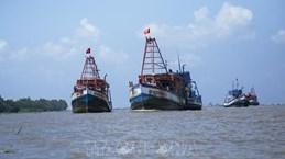 """Kien Giang s'efforce de mettre fin à la pêche illégale pour faire retirer le """"carton jaune"""" de la CE"""