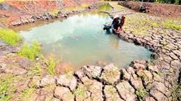 Changement climatique: créer des modèles de subsistance pour les habitants de Tra Vinh