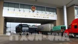 Têt : 1.300 tonnes de produits agricoles exportés via la porte frontalière de Lao Cai
