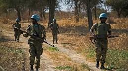 ONU : Le Vietnam appelle à promouvoir une solution rapide et pacifique à la question d'Abyei