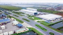 Le commerce Vietnam-Belgique augmente, offrant de nombreuses opportunités aux investisseurs