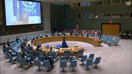 Le Vietnam souligne l'importance de la coopération régionale pour l'Afrique centrale