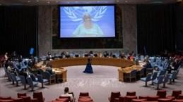 ONU : Le Vietnam salue les mesures  pour assurer la stabilité politique  au Congo
