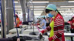 Dong Nai crée des conditions favorables pour que les experts reviennent au travail