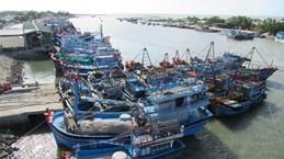 Ben Tre renforce la gestion des navires de pêche pour lutter contre la pêche INN