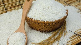 Le Vietnam représente 87% des importations totales de riz des Philippines
