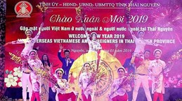 Rencontre printanière avec les Viêt kiêu et les étrangers à Thai Nguyên