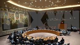 Conseil de sécurité: le Vietnam appelle au respect des accords déjà conclus au Sahara Occidental