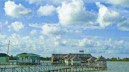 Le marais de Thi Tuong