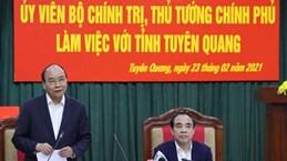 PM : Tuyen Quang nécessite le développement de l'industrie du bois