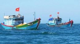 Ben Tre applique des sanctions sévères pour lutter contre la pêche INN
