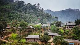 Lung Vân, une immersion paisible dans la culture Muong à Hoà Binh