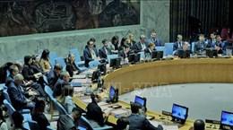Le Conseil de sécurité de l'ONU discute de la situation du Mali sous la présidence du Vietnam
