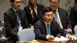 Conseil de sécurité : le Vietnam privilégie le respect de la Charte de l'ONU