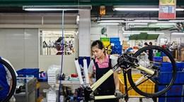 Le premier fabricant mondial de vélos GIANT implanterait une usine au Vietnam