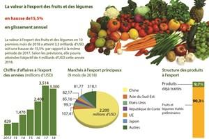 La valeur à l'export des fruits et des légumes en hausse de 15,5% en glissement annuel