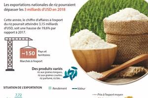 Les exportations nationales de riz pourraient dépasser les 3 milliards d'USD en 2018
