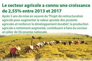 Le secteur agricole a connu une croissance de 2,55% entre 2013 et 2017