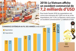 Le Vietnam affiche un excédent commercial de 7,2 milliards de dollars en 2018