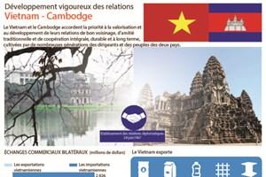 Développement vigoureux des relations Vietnam - Cambodge