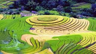 Le Vietnam, destination impressionnante au Salon international du tourisme voyages à Montréal