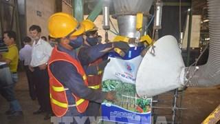 Binh Duong : mise en service d'une usine de transformation de déchets en engrais