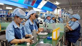 Tra Vinh : Augmentation du nombre d'entreprises nouvellement enregistrées