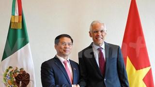 Vietnam-Mexique : La 5e consultation politique entre les ministères des Affaires étrangères