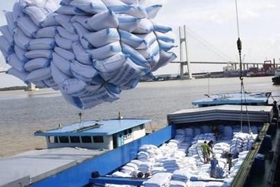 De premières tonnes de riz vietnamien importées au Royaume-Uni dans le cadre de l'UKVFTA