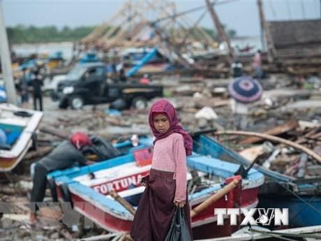 La Nouvelle-Zélande accorde un million de dollars au redressement indonésien après le tsunami