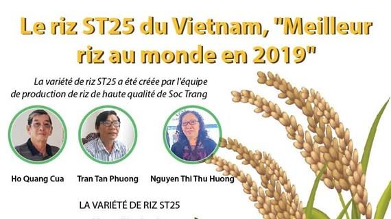"""Le riz ST25 du Vietnam, """"Meilleur riz au monde en 2019"""""""