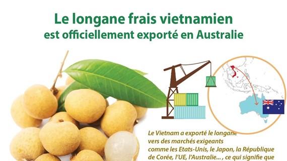 Le longane frais vietnamien est officiellement exporté en Australie