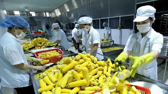 Produits agricoles : des perspectives prometteuses grâce au RCEP