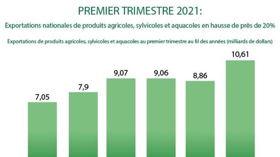 Exportations de produits agricoles, sylvicoles et aquacoles en haussede 20% au 1er trimestre