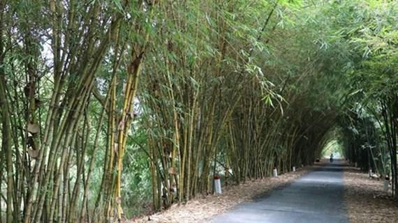 Dông Thap développe la biodiversité dans l'agriculture