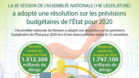 L'Assemblée nationale adopte une résolution sur les prévisions budgétaires de l'État pour 2020