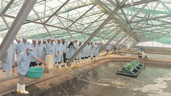 Bac Lieu développe la logistique et les industries de soutien à l'agriculture
