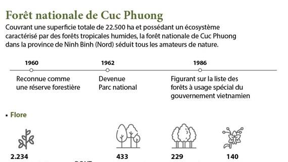 La forêt nationale de Cuc Phuong séduit tous les amateurs de nature