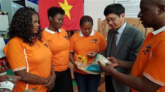 Le Vietnam participe à la foire internationale FACIM 2019 au Mozambique