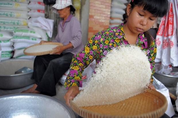 L'economie cambodgienne maintient une croissance de 7% a moyen terme hinh anh 1