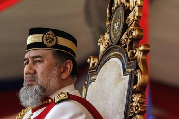 Le roi de la Malaisie a abdique le 6 janvier hinh anh 1