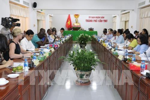 Cote d'Ivoire renforce la cooperation avec Can Tho dans l'agriculture hinh anh 1