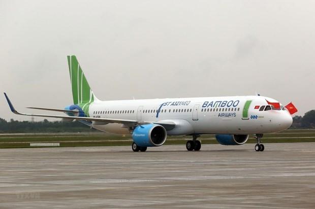 Le Japon veut ouvrir un nouveau vol direct vers le Vietnam hinh anh 1